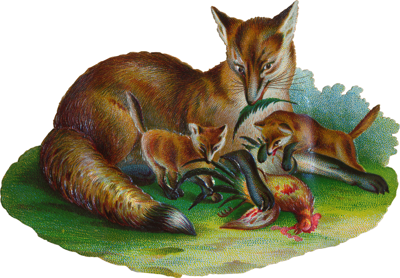 http://www.co-opones.to/male/viewer/images/Bh-Foxportrait.jpg